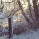 fence and trees with snow | the DAWN Method