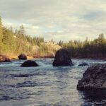 Rocks in a river with forest and sky | the DAWN Method